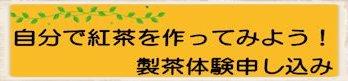 紅茶フェス 製茶申し込み350-84