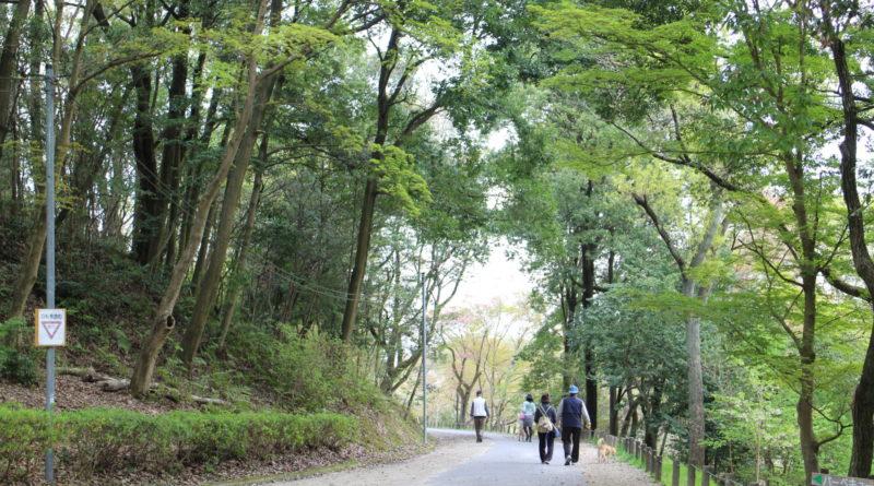 平成31年春 第70回全国植樹祭
